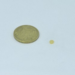 Disco D4x1,5 mm Oro